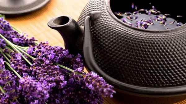 Công dụng của hoa oải hương