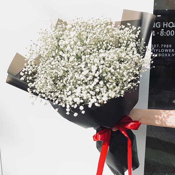 ý nghĩa hoa bi trắng