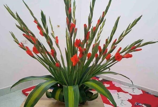 Hướng dẫn cắm hoa huệ đỏ trên bàn thờ