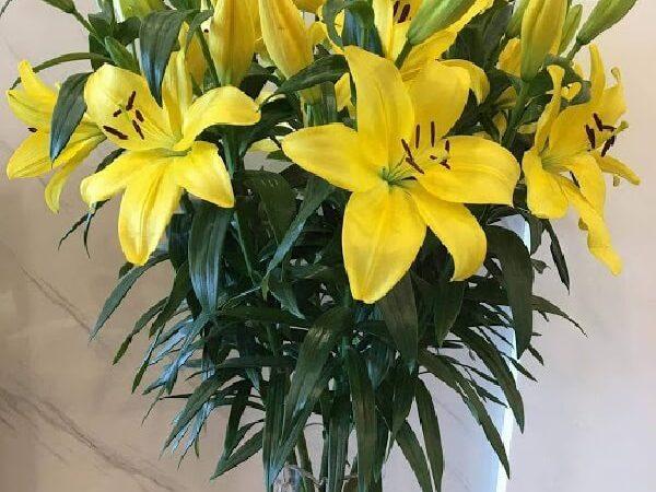 Tự Học Cách Cắm Hoa Ly Tươi Lâu Bền Màu